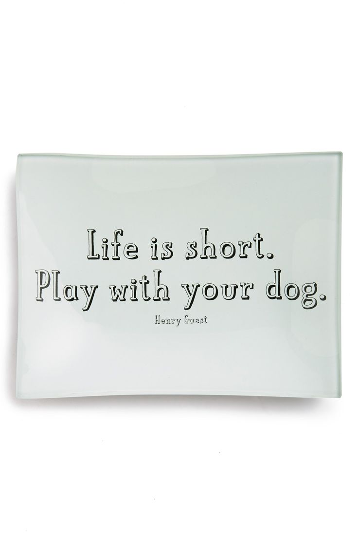 Life is short. Play with your dog. :)