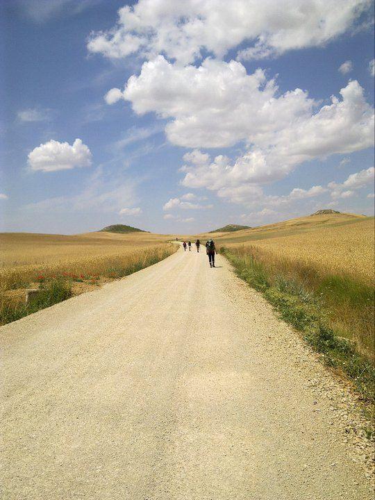 El Camino de Santiago; I WILL do this someday!!!