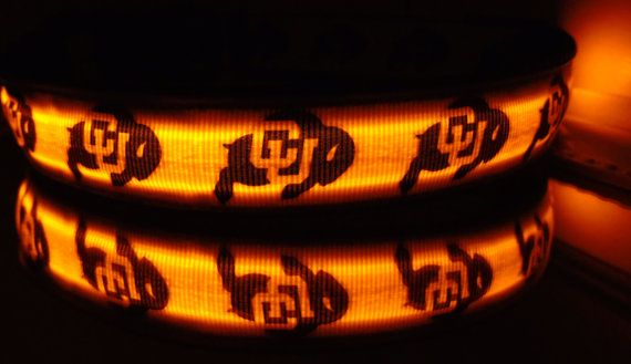 CU Buffs LED dog collar lighted pet collar glows in by bellaTAZ