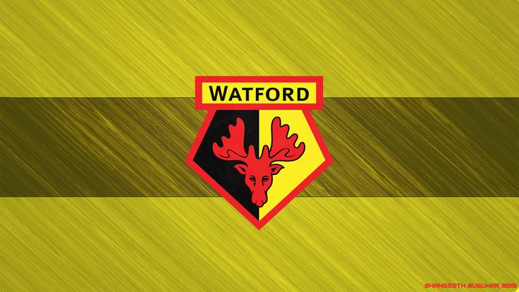 FM16 | Watford FC | The Hornets Are Buzzing