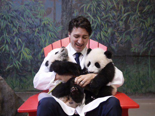 Justin Trudeau, Canada's dreamy prime minister, explained for ...