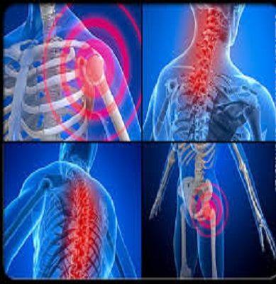 Fibromyalgie komt voor bij ongeveer 5% van de vrouwen en 1% van de mannen. Recente onderzoeken geven meer inzicht in de ziekte en leggen de link van fibromyalgie onder andere naar hersenactiviteit,...