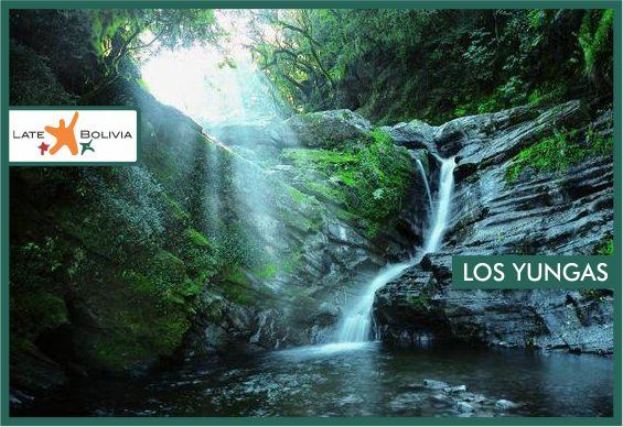 Visit Los Yungas in La Paz