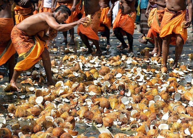 スリランカ・コロンボ(Colombo)で行われたヒンズー教のお祭り「ウェール(Vel)祭」で、ココナツの実を地面に叩きつける信者たち(2014年7月21日撮影)。(c)AFP/Ishara S.KODIKARA ▼23Jul2014AFP|我慢は信仰の証し?ヒンズー教の「ウェール祭」 スリランカ http://www.afpbb.com/articles/-/3021179 #Vel_festival