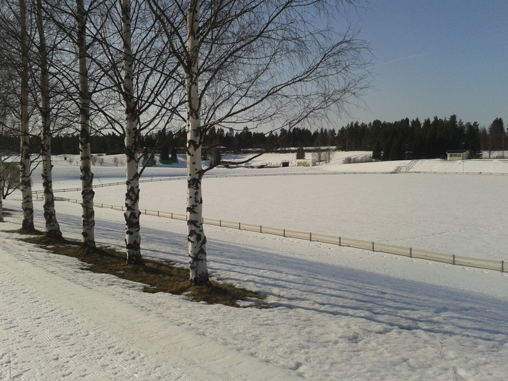 Some running track covered in snow in Sarkkiranta, Kempele