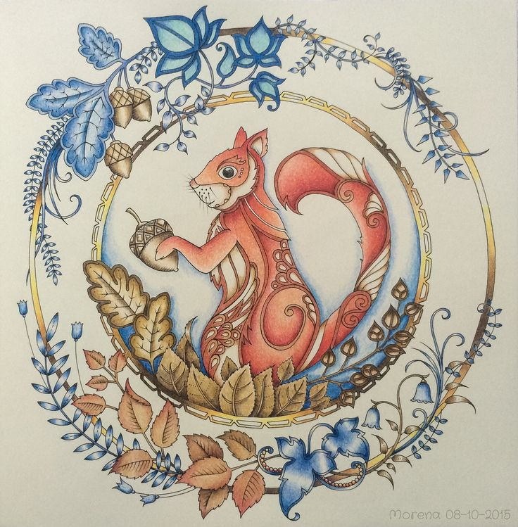 Enchanted Forest Coloring Book Ideas Images About Squirrels