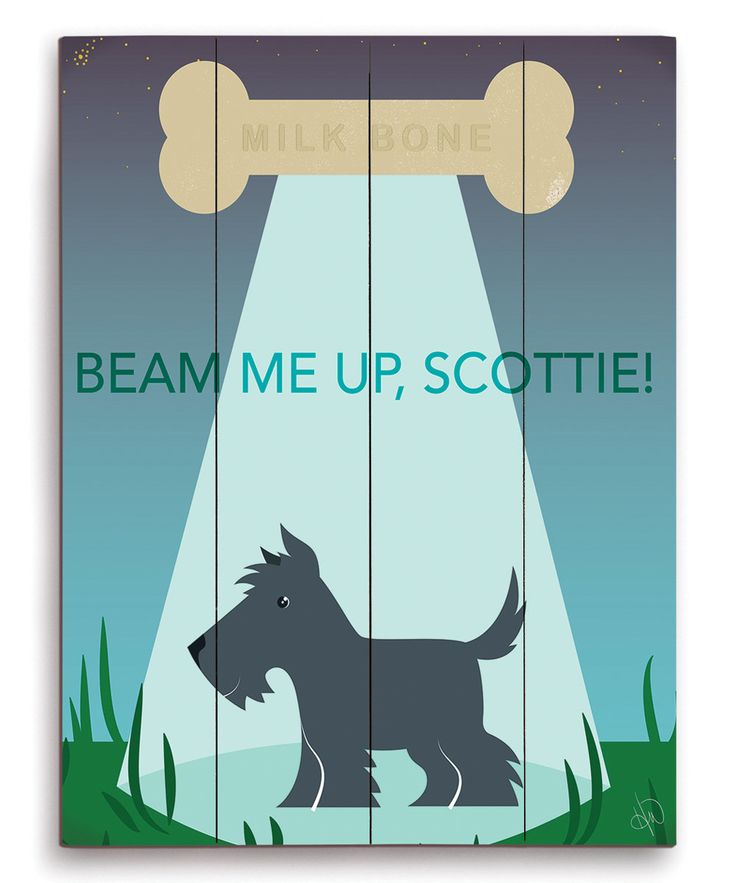 1044 Best Scottish Images On Pinterest Scottie Dogs