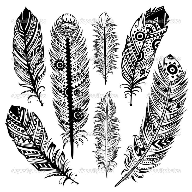 Set of ethnic feathers — Stock Vector © transiastock #25457559