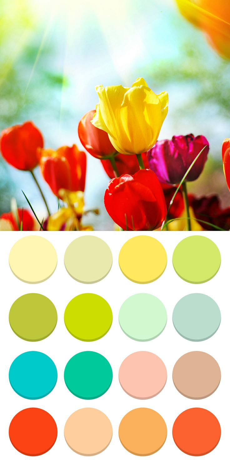1000 Images About Warm True Shaded Spring Colours On