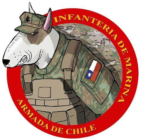 Infanteria de Marina, Chile