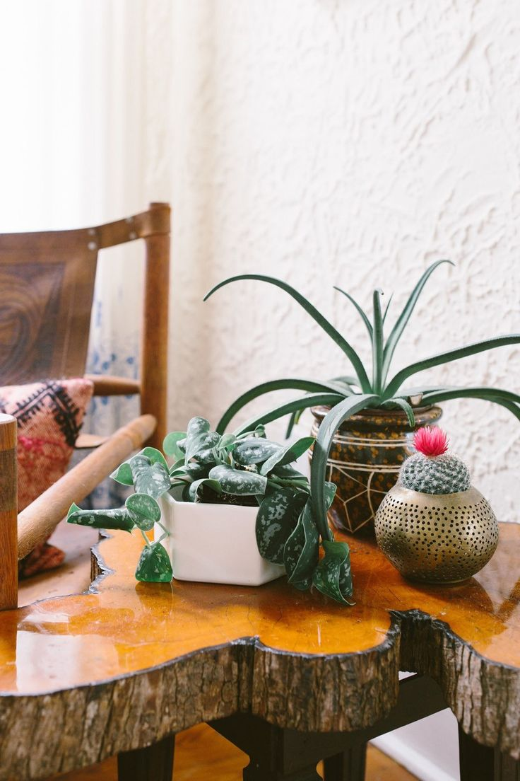 Living Room Style. The planter that goes with anything and everything  makes you look like a design Living Room StylesMiscellaneous 78 best Style images on Pinterest room