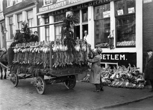 bij ons door de straat kwam altijd iemand met een kar die alleen de huiden verkocht en dan riep hij Haaaase en konijnen velluhhhhhh !!!! Die kon je dan kopen.