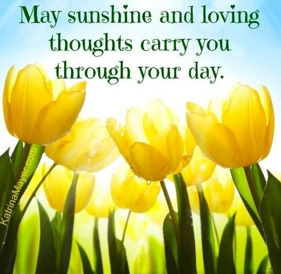 quotes about sunshine - photo #34