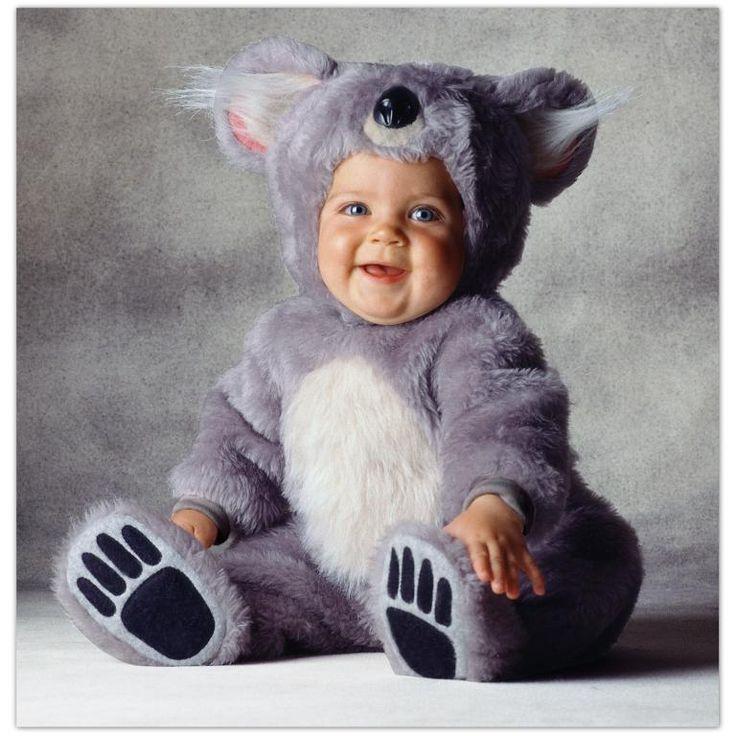 halloween costume: Babies, Baby Koala, Halloween Costumes, Baby Costumes, Koalas Costumes, Koala Bears, Toms Arma, Kids, Koalas Bears