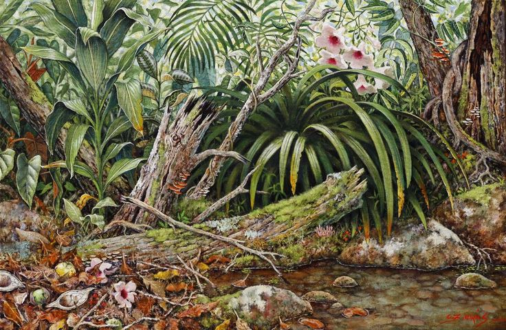 Stream Lily: Oil on Canvas by #artist Christine Atkins #painting #fineart #ianart #art http://internationalartnetwork.com/products/StreamLily.html