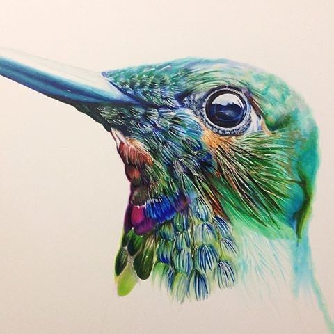 Colored Pencil Art Gallery | www.pixshark.com - Images ...