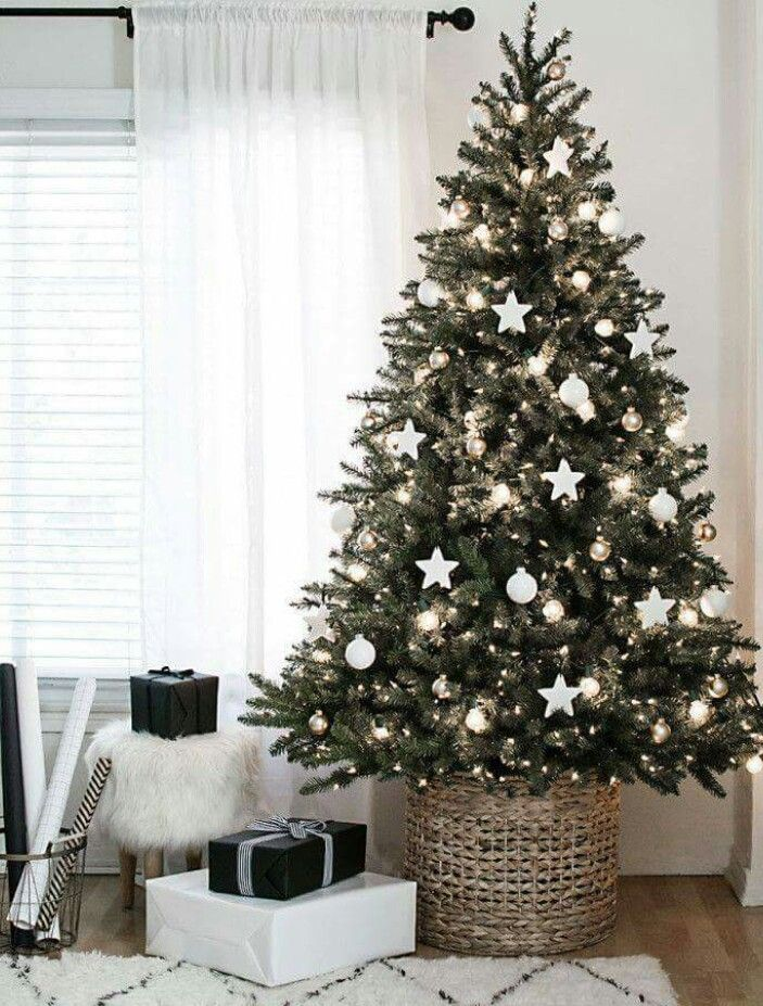 Christmas Trees By Robert Frost Part - 27: Christmas Tree