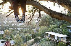 http://liveunitedyall.org/wp-content/kid-in-tree.jpg