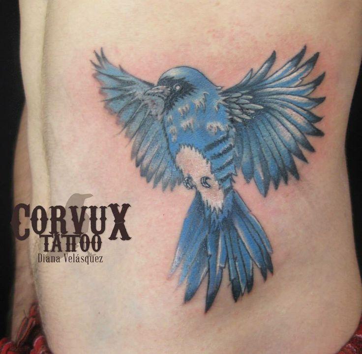 Bird, pajaro, Golondria azulejo Corvux Tattoo Diana Velasquez Medellin Colombia