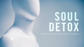 Elevation Soul Detox. Interesting.