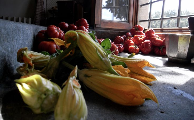 Zucchini flowers and tomatoes from my vegetable garden