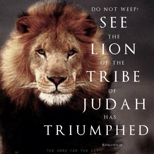 LION OF JUDAH, LION, BIBLE VERSE, CHRISTIAN QUOTES