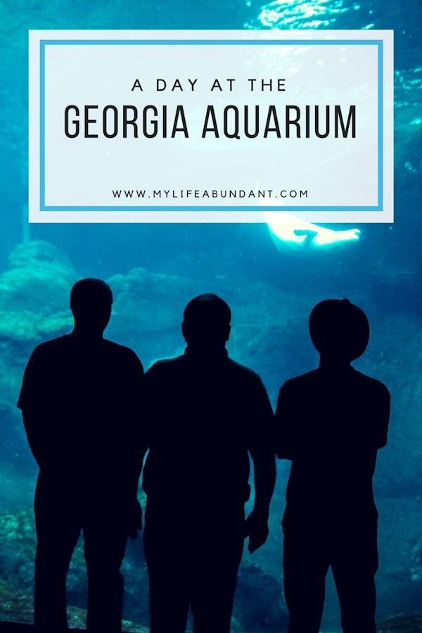 Looking for a great place to go in Atlanta with the whole family?  Try the Georgia Aquarium​.  We loved it and a great place for kids to learn, see, touch and feel the sea.