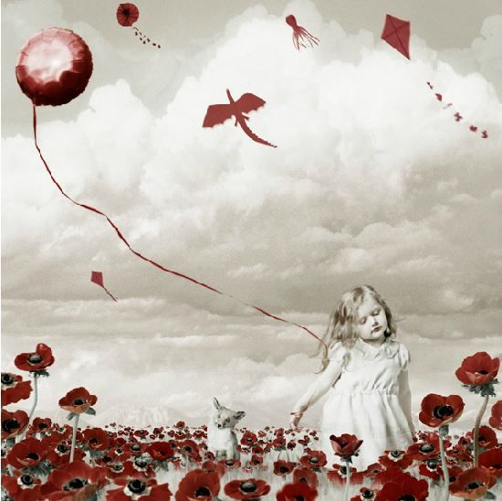 """Field of Red Anemones"" | Helena Blomqvist"