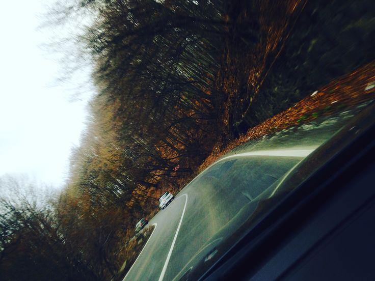 Autumn - Natural - Transilvania