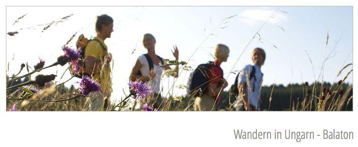 Wandern in Ungarn - Balaton - http://www.schweiz-ungarn.ch/#!wandern-in-ungarn/c1d8q
