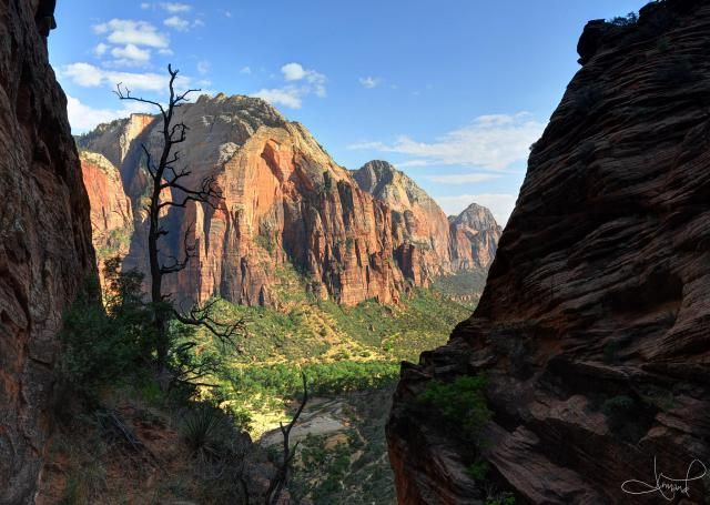 7 National Parks You Can Drive to from Las Vegas: Road Trip To Zion National Park in Utah