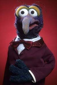 David would want to be Gonzo if he could be a Muppet.