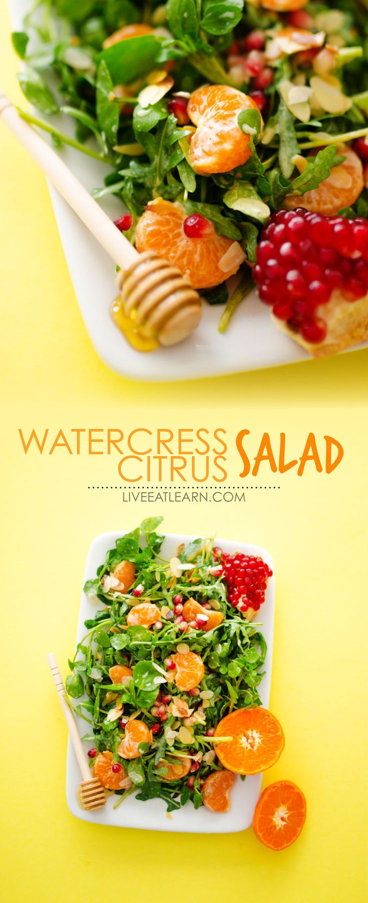 This Citrus Watercress Salad recipe is a simple, summery combination of clementines, pomegranate, and leafy greens, tossed in a cinnamon yogurt dressing. It's a healthy, vegetarian and gluten-free dinner or lunch recipe that is easy to make, quick, and so full of flavor. // Live Eat Learn Sponsored by @WatercressLife #watercress #watercresslife #wondersofwatercress