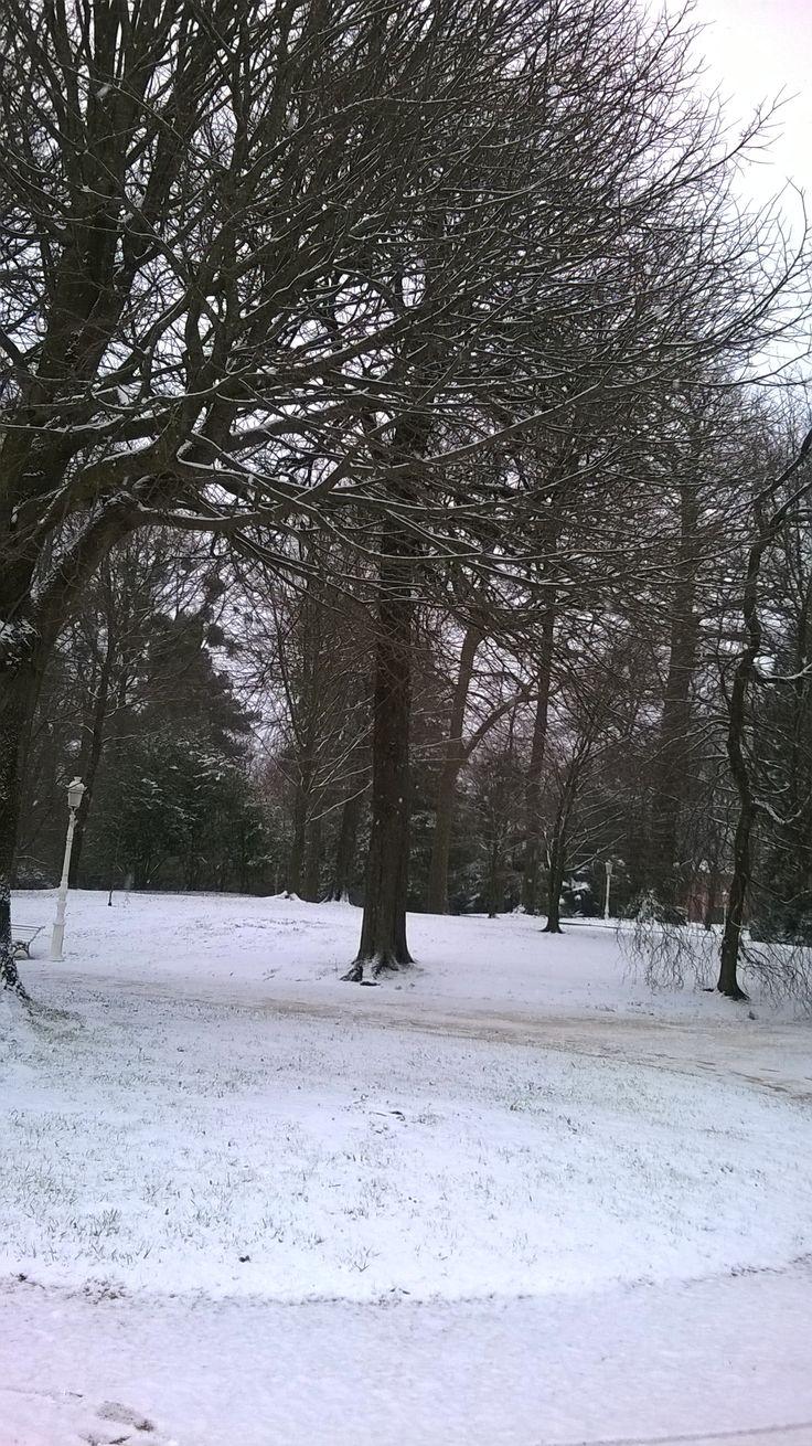 Nieve en Donosti