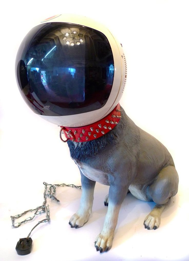 Finn Stone - Grey Cyberdog| Fibreglass with vintage TV head, 79x69x30cm, £2650