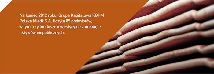 Ogólne informacje o Grupie Kapitałowej - KGHM - Polska Miedź