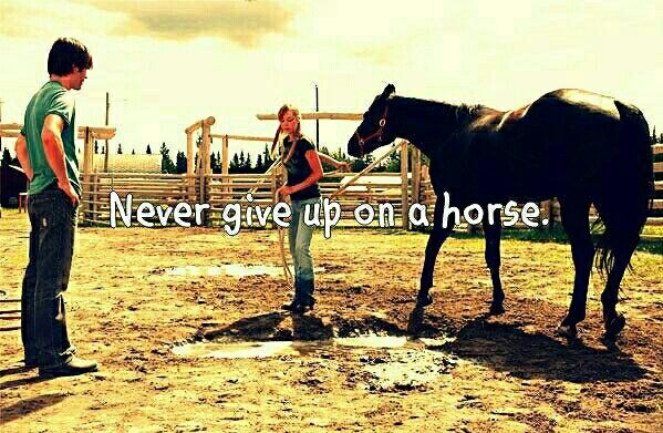 Never give up on a horse
