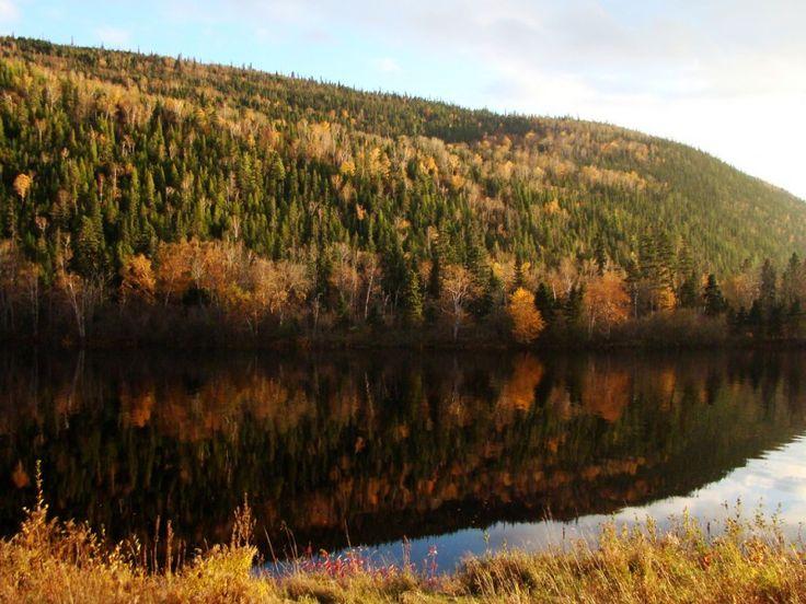 Le Saguenay en automne. #Cestgeant #QuebecOriginal #Couleurs