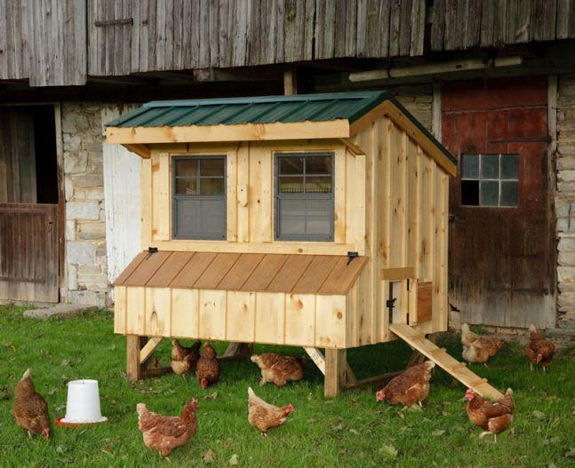Backyard Chicken Coop Designs chicken coop designs for backyard chickens hgtv 230 Best Images About Coop Design Backyard Chickens On Pinterest Chicken Coop Designs The Chicken And A Chicken