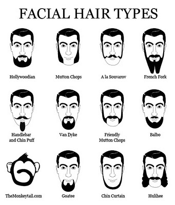 the monkey tail cracks me up  types of beards mens