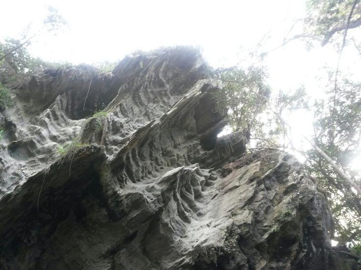 Otter hiking trail