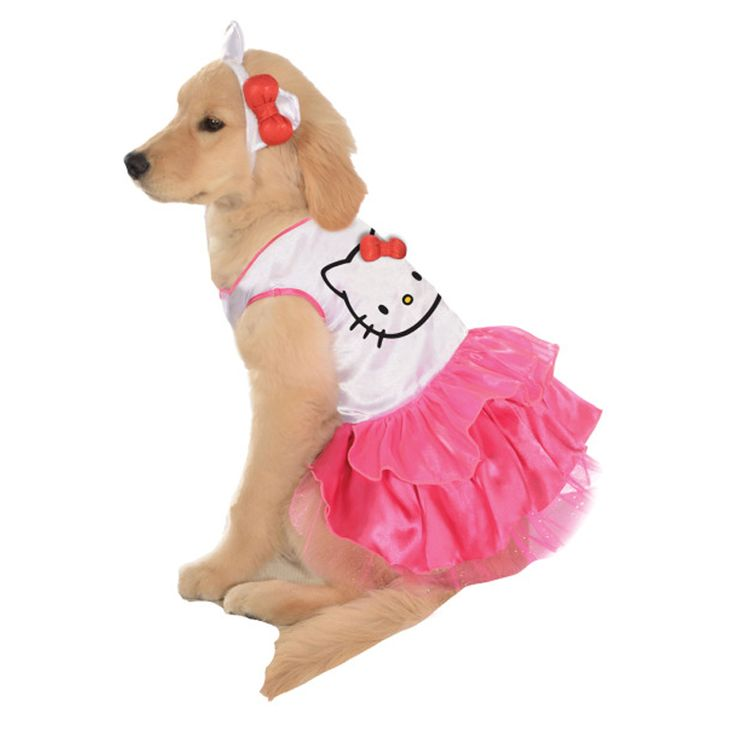 A kitty costume that made her seductive 6
