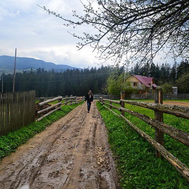 Hiking in Ukrainian Carpathians #carpathians #vorohta #trecking #hiking #tour #trip #travel #vacation #likealocal #tripadvisor #westernukraine #ukrainetravel #mountains #ツアー #旅行 #ウクライナ #ハイキング #山脈