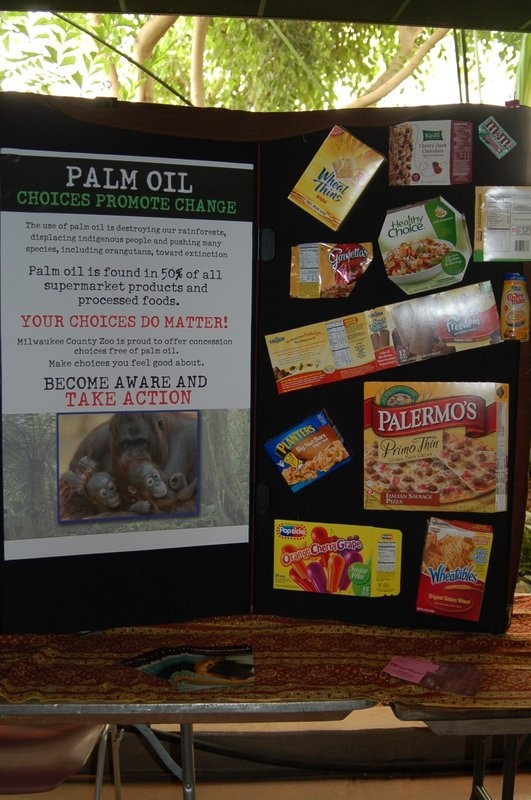 Good choices - packaged foods that do not contain palm oil
