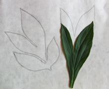 # 07_04. Как сделать выкройку цветка? Мастер-класс.