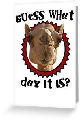 funny camel cartoon happy birthday - Google Search