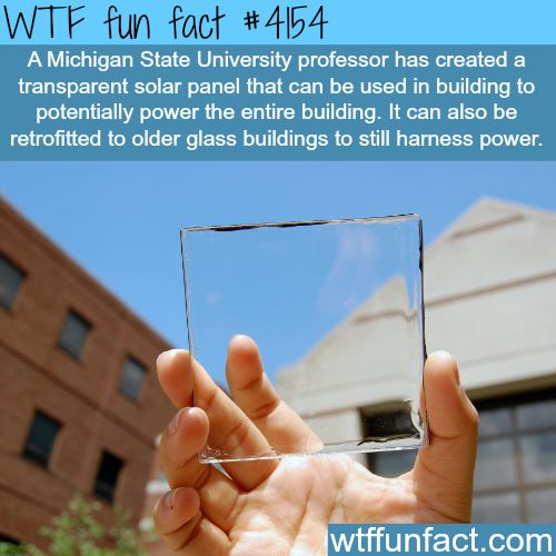 Transparent solar panel made by Michigan State University -  WTF fun facts