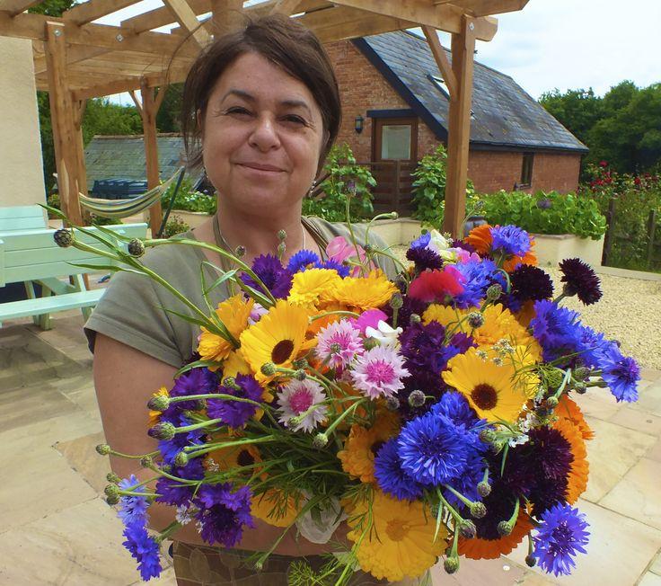 Organic edible flowers. Maddocks Farm Organics.