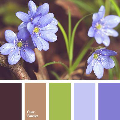 Color Palette #2790                                                                                                                                                      More