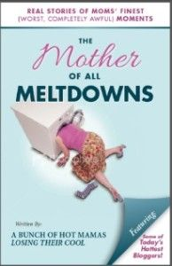 Such a hilarious book of mothers having meltdowns, written by 30 bloggers.